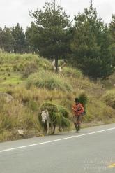 CUENCA_Villages_April 2017_0021001